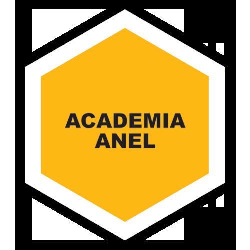 Academia Anel