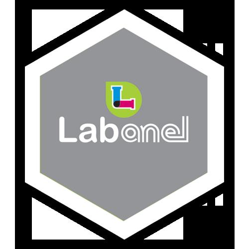 Lab Anel